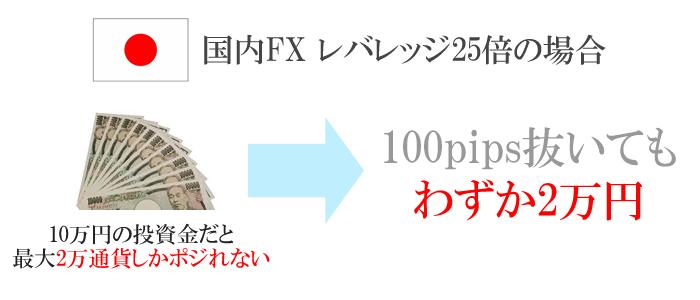 国内FXだと100pips抜いてもわずか2万円
